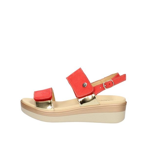 Cinzia Soft  With wedge coral